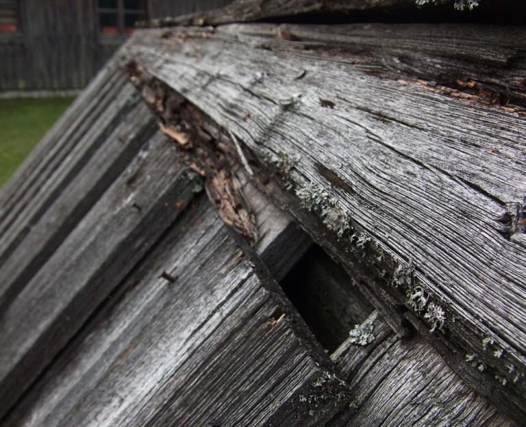 '' Kaivon suojus '' Lahonnut puu alkaa tiputtaa ovea kaivon päältä.